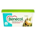 Benecol Light 500g