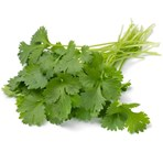 Fresh Cut Coriander 30g