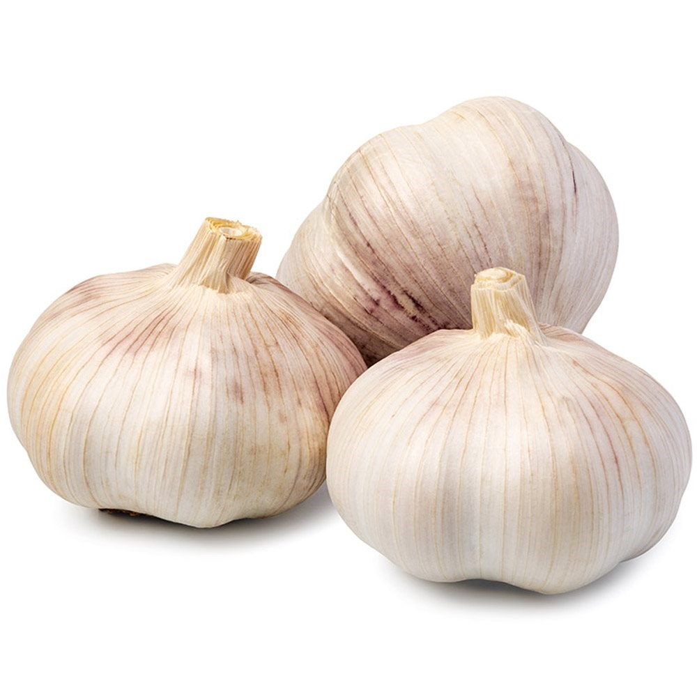 Garlic 4 pack