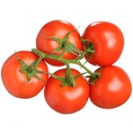 Tomatoes on the vine 450g
